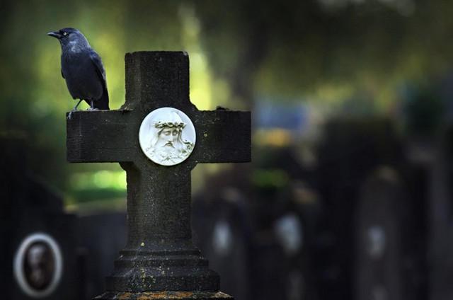 Приметы на кладбище: как не навлечь на себя беду?