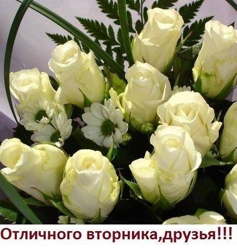 3470549_vtornik_otl (465x490, 59Kb)