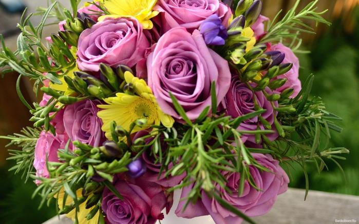 flowers_05 (700x437, 397Kb)