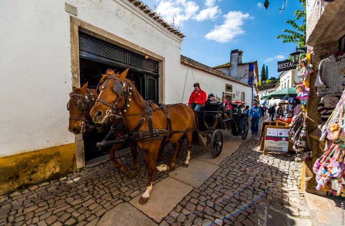 portugal_obidos01 (700x458, 441Kb)