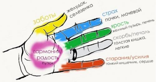 пальцы (500x263, 21Kb)