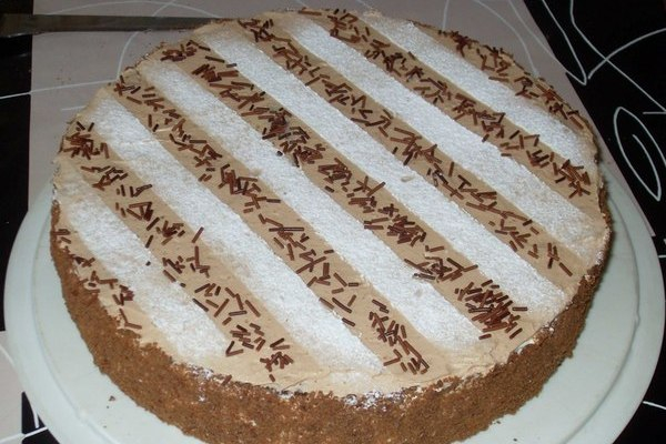 domashnij-tort-mishka-na-severe (600x400, 223Kb)