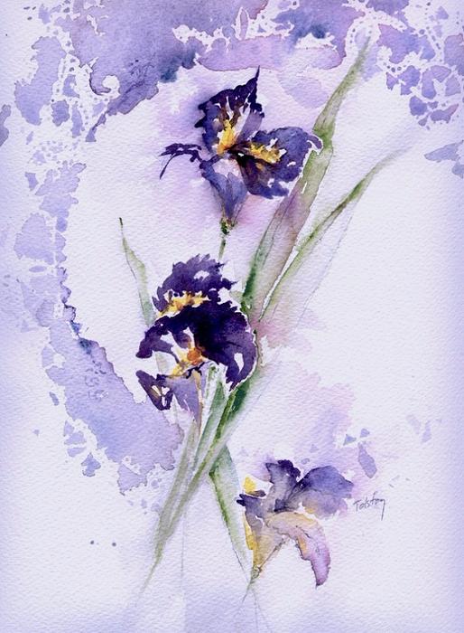 Irises (514x700, 394Kb)