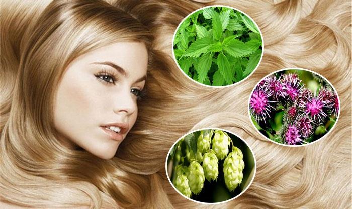 Укрепление волос народными методами/4565333_75175516 (700x416, 113Kb)