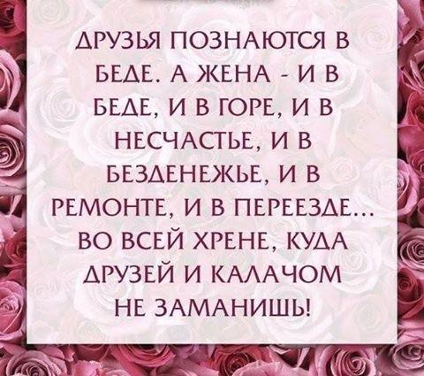 15355572_143329469485223_1507243865320224005_n (480x425, 193Kb)