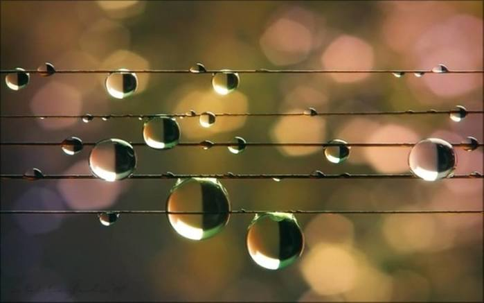 5320643_melodija_dushi_umirotvorjaushaja_bozhestvennaja_muzika (700x437, 25Kb)