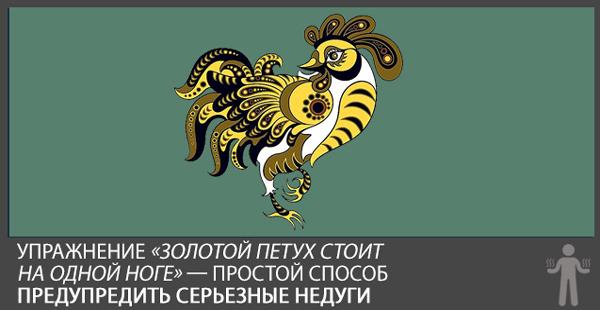 золотой-петух (600x310, 60Kb)