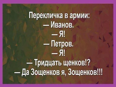 15337533_1377079099009461_9140890921665703842_n (480x360, 136Kb)