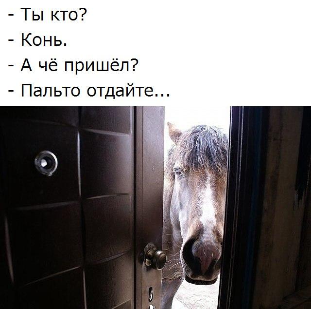 _L4iKDSCQQ0 (640x634, 61Kb)