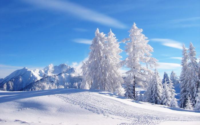 зимний пейзаж 6 (700x437, 316Kb)