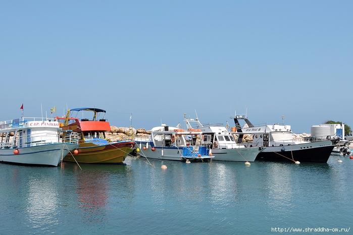 Кипр, май 2016 (335) (700x466, 224Kb)