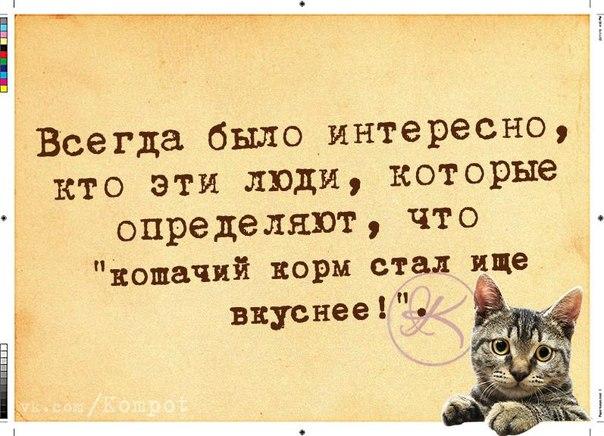 5672049_1419786288_frazochki16 (604x436, 70Kb)