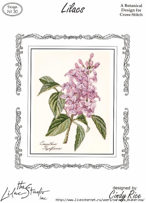 The Lilac Studio 30 Llilacs (504x700, 201Kb)