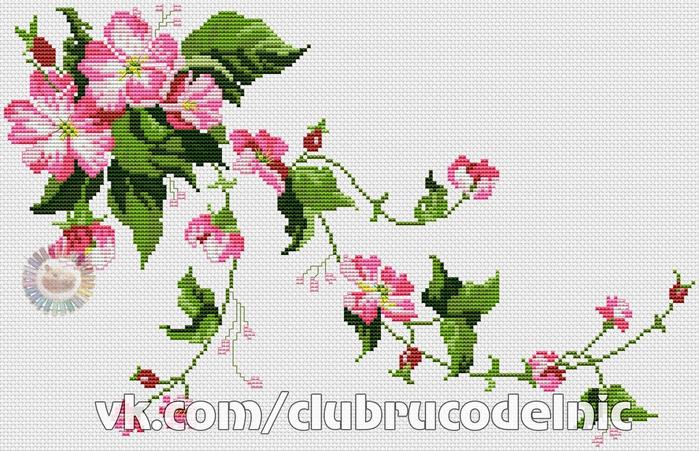 Wild Roses (700x451, 375Kb)