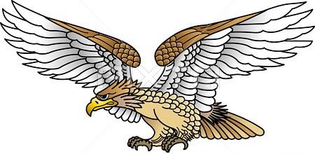 орел (450x220, 66Kb)