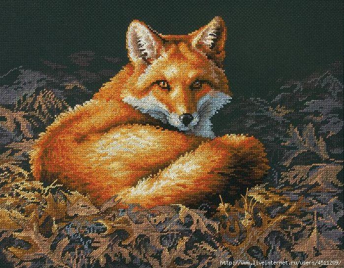 Dimensions 70-35318 Sunlit Fox (700x546, 316Kb)