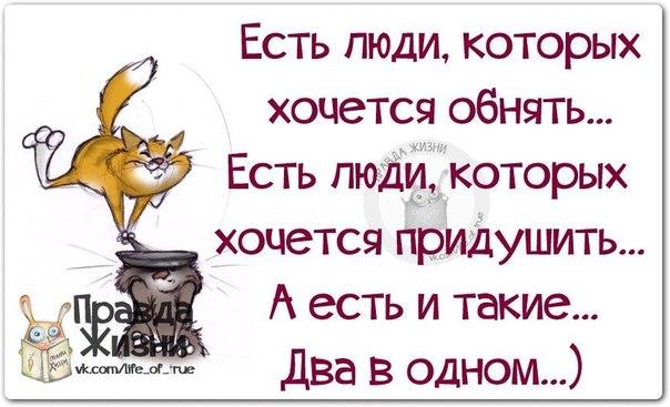 5672049_1420483990_frazki8 (604x367, 53Kb)