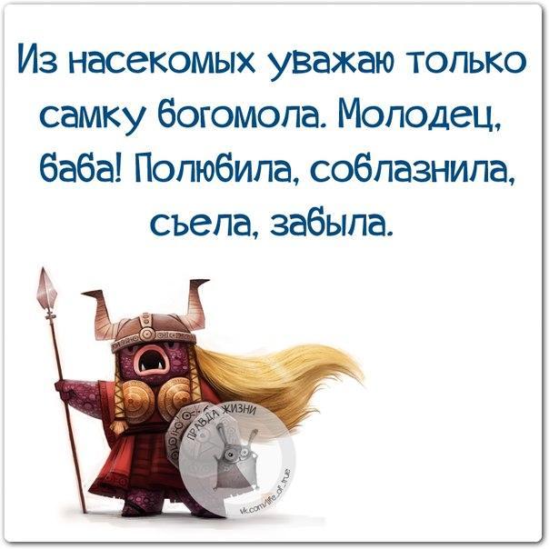 5672049_1420484030_frazki23 (604x604, 49Kb)