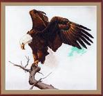 Превью З-012 Орлан (300x277, 68Kb)