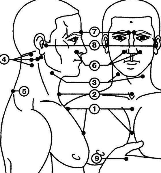точечный массаж для повышения иммунитета (558x600, 146Kb)