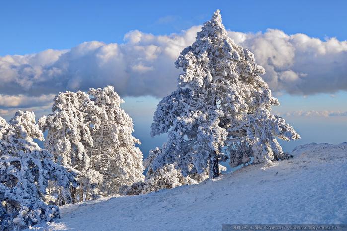 ай-петри зимой фото 16 (700x467, 405Kb)