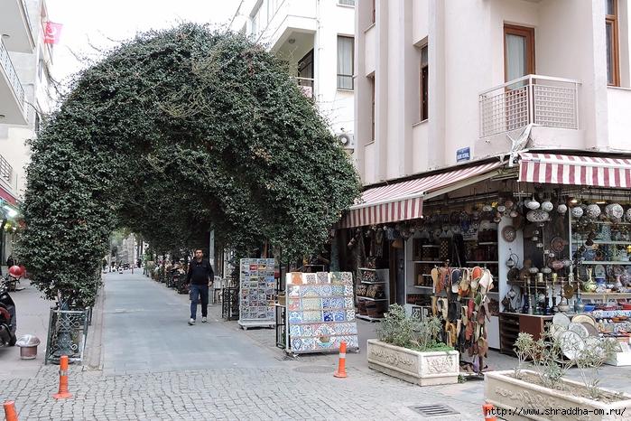 Shraddha_trаvel Турция 2016 (663) (700x466, 376Kb)