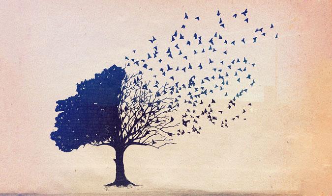 pride-tree (675x400, 67Kb)
