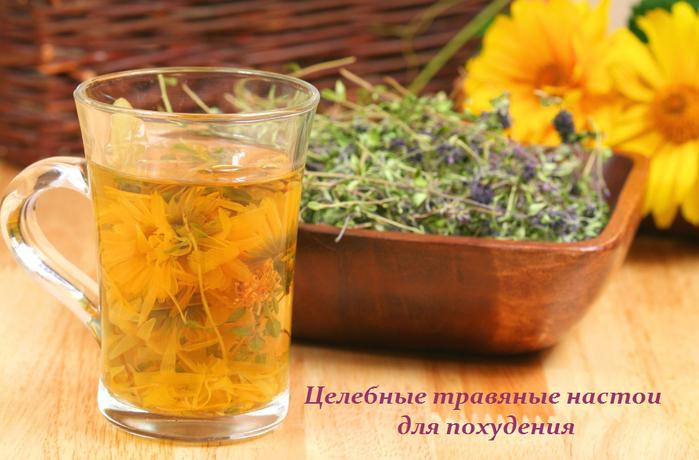 2749438_Celebnie_travyanie_nastoi_dlya_pohydeniya (700x460, 466Kb)