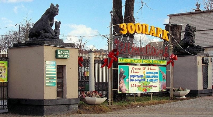 kaliningradskij-zoopark-000 (700x384, 232Kb)