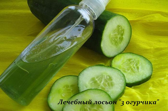 2749438_Lechebnii_loson_3_ogyrchika (700x464, 425Kb)