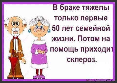 13339674_874233299372637_8229732260431259442_n (480x343, 102Kb)