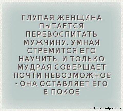 13925037_887234908076684_3106034218421269227_n (480x431, 99Kb)