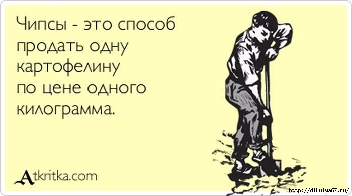 129972859_5672049_1352694191_atkritka_11 (700x390, 93Kb)