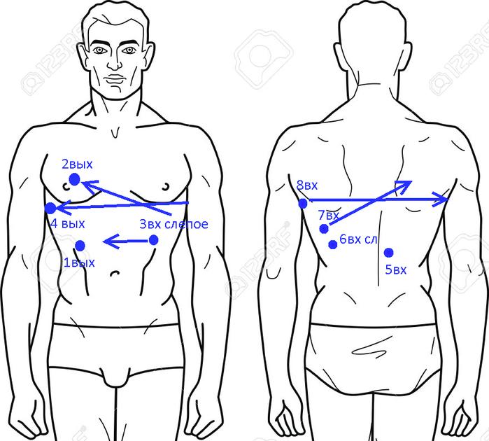 официальная  схема   пулевых  ранений  Немцова (700x630, 222Kb)