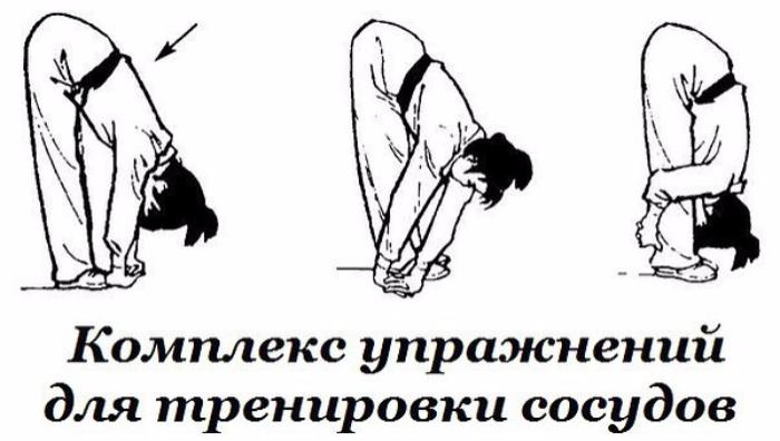 """alt=""""Комплекс упражнений для тренировки сосудов""""/2835299__1_ (700x396, 266Kb)"""