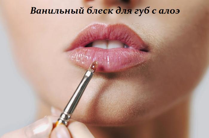 2749438_Vanilnii_blesk_dlya_gyb (700x461, 322Kb)