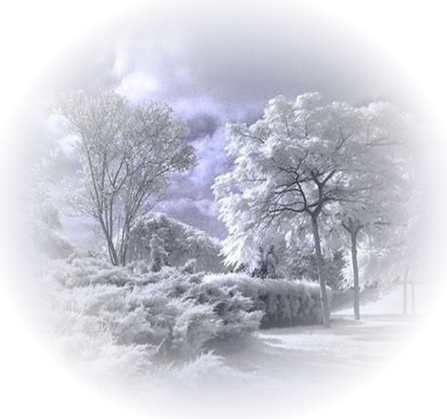 Winter_Landscapes_59 (500x469, 338Kb)