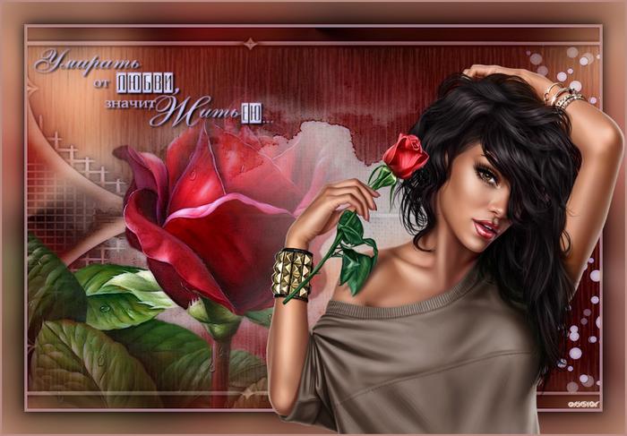 розы (700x487, 498Kb)