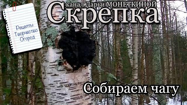 proxy.imgsmail.ru (640x360, 68Kb)
