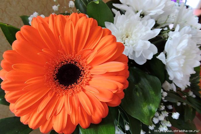 букет с оранжевым (2) (700x466, 284Kb)
