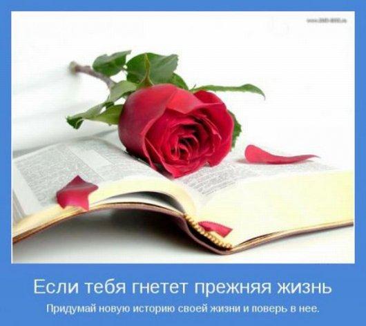 Stimka.ru_1326793447_motivats (530x472, 152Kb)