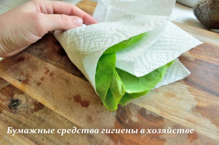 2749438_Bymajnie_sredstva_gigieni_v_hozyaistve (700x462, 472Kb)