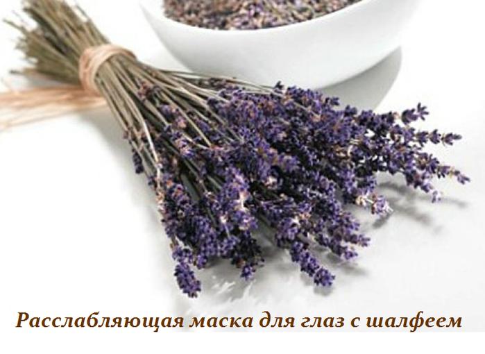 2749438_Rasslablyaushaya_maska_dlya_glaz_s_shalfeem (700x510, 383Kb)