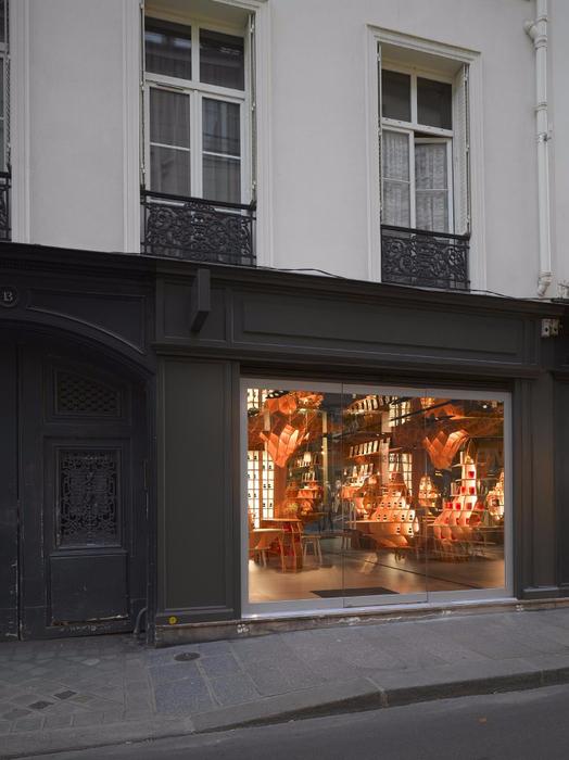 стильный дизайн магазина парфюмерии 8 (524x700, 299Kb)