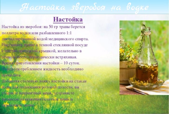 "alt=""Настойка зверобоя на водке""/2835299_Nastoika_zveroboya_na_vodke (700x472, 509Kb)"