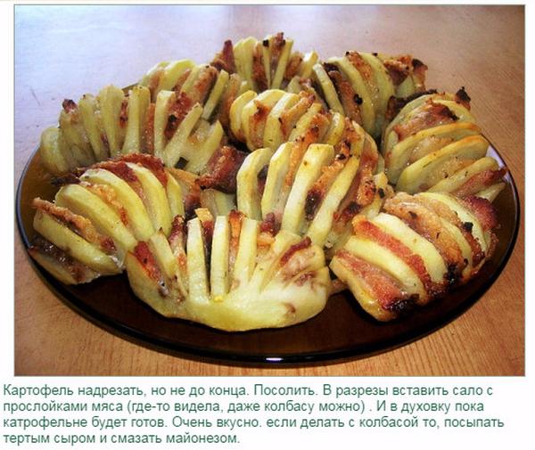 Картошка гармошка в духовке рецепт с сыром