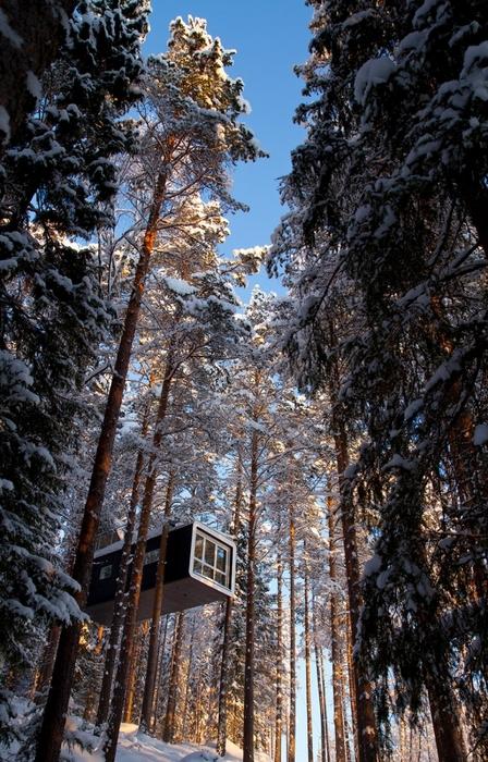 Дома номера на деревьях в шведском отеле