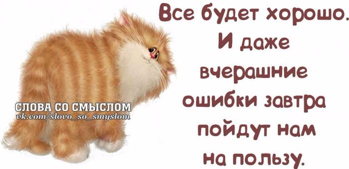 1395948551_frazochki-9 (700x340, 198Kb)