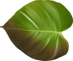 Превью All Natural (129) (600x500, 236Kb)