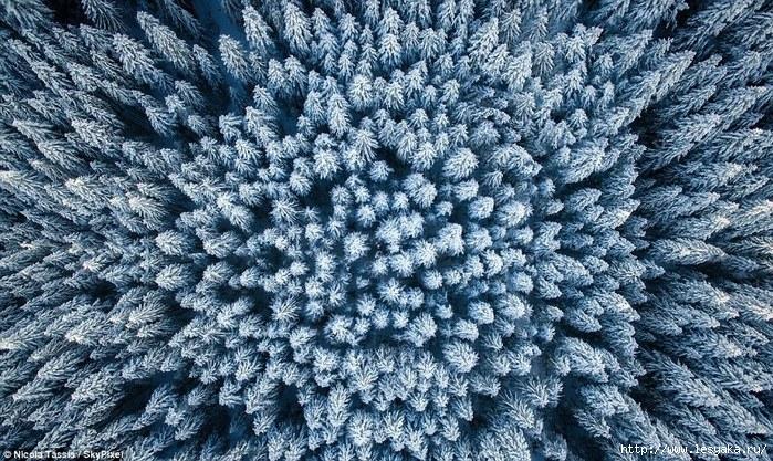 3925073_zimniepejzazhysvysoty16 (700x417, 387Kb)